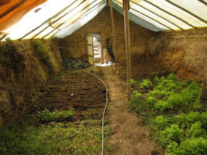 If You Want to Grow Your Food Year Round then You Need to See this $300 Underground Greenhouse